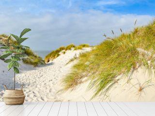 Weg zum Strand auf der Insel Amrum