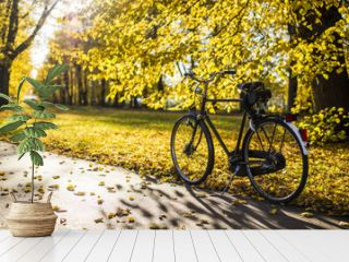 Bicycle on the street of Riga, Latvia, on a sunny autumn day