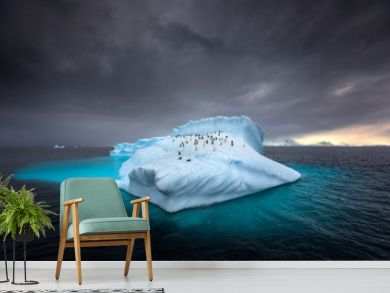 Penguins on a giant iceberg in Antarctica
