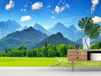 Panorama of summer mountains