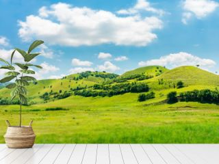 green hill in summer landscape. beautiful countryside scenery. fluffy clouds on a bright blue sky. tilt-shift and motion blur effect applied.