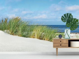 Baltic Sea Beach with Dunes and Ocean View - Panorama