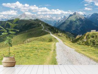 Panorama eines Mountainbike Trails in den Alpen