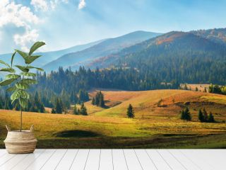 rural area of carpathian mountains in autumn. wonderful panorama of borzhava mountains in dappled light observed from podobovets village. agricultural fields on rolling hills near the spruce forest