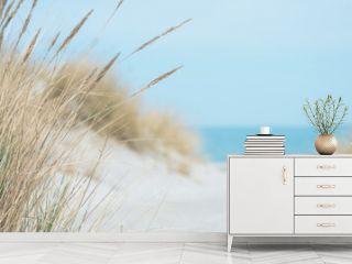 Baltic sea dunes over blue coastline background