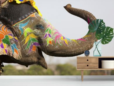 Decorated elephant at the elephant festival in Jaipur
