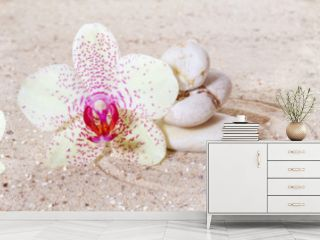 Panorama with orchids and zen stones in the sand