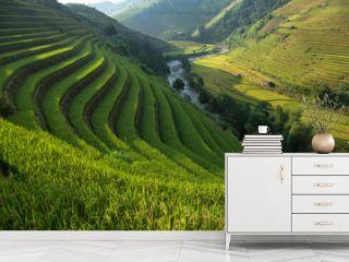 Rice field at Mu Cang Chai, Yenbai province, Vietnam