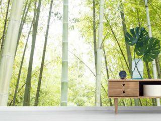Bamboo horizontal background