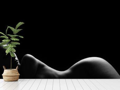 Sexy body nude woman. Naked sensual beautiful girl.