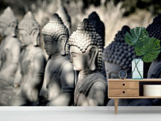 Meditating Buddha Statues in a Row