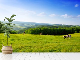 Summer landscape with green grass and cow.
