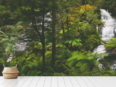 Wasserfall Triplet Falls im Regenwald an der Great Ocean Road in Australien
