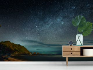 Panoramic view of the coast sea against the background of night sky