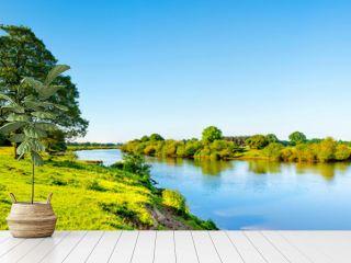 Landschaft im Sommer mit Fluss, Wiese und Baum