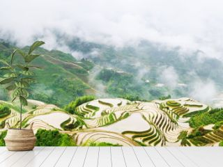 Panorama of terraced rice field in Longji, Guilin area, China