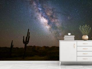 The Milky Way and starry night night in the Arizona desert.