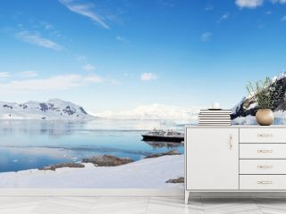Beautiful landscape and scenery in Antarctica