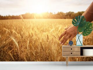 Harvest concept, close up of male hand in the wheat field with copy space