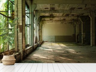 Industrial interior at the old electronic devices factory with big windows and empty floor. Interior inside an abandoned factory, overgrown with green moss and plants.