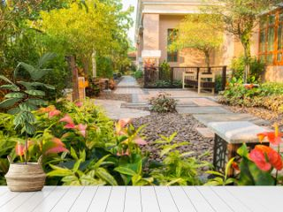 design and decorative garden with chair