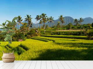 Panoramic view of Rice Terraces and blue sky, Ubud, Bali, Indonesia. Beautiful green young rice fields, natural beautiful tropical background. Rice farm, field, paddy. Travel concept.