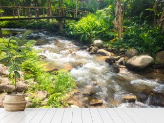 Small river flowing in the forests thailand.