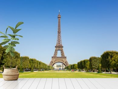 Paris Eiffel tower France travel landmark