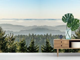 Amazing fog landscape in black forest panorama banner long